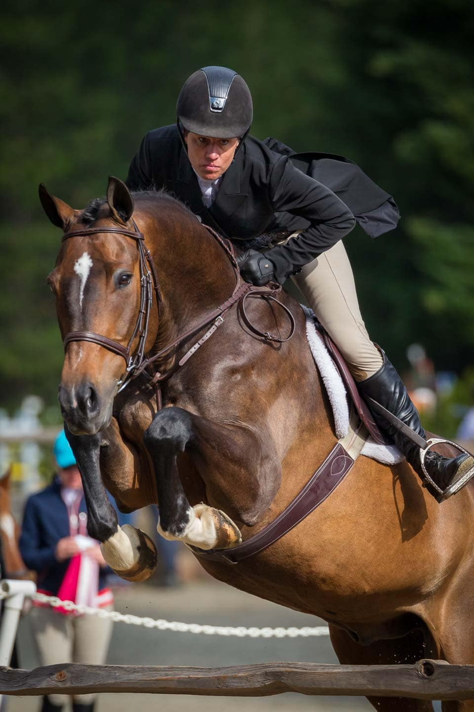 Professional equestrian has an intent expression while clearing a fence during Hunter Derby competition